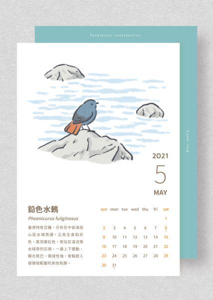 【獨家限時預購】看見山裡的小精靈—2021年鳥類繪月曆